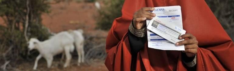 Kenya: an insurance scheme based on satellite data for vulnerable pastoralists