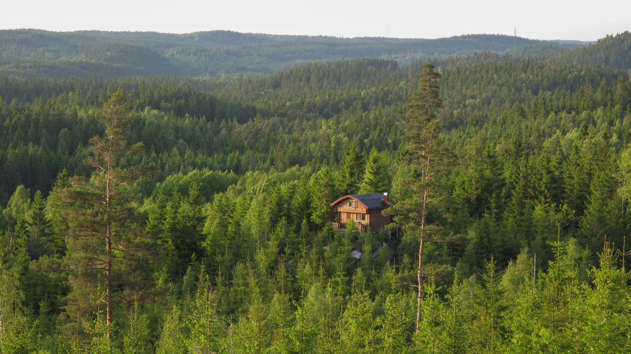 Sustainable Forest Management ~ Eurisy acting collectively to bridge space and society