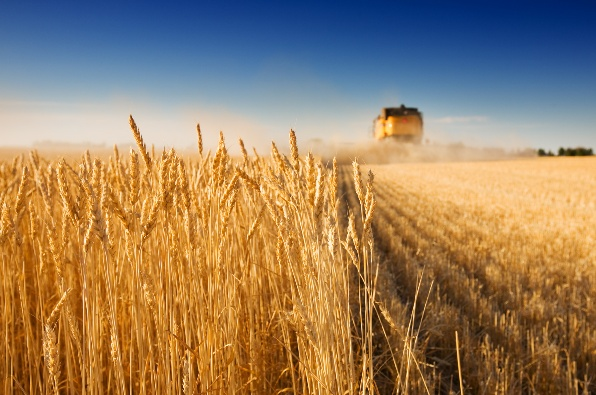 GNSS leads the way in precision farming