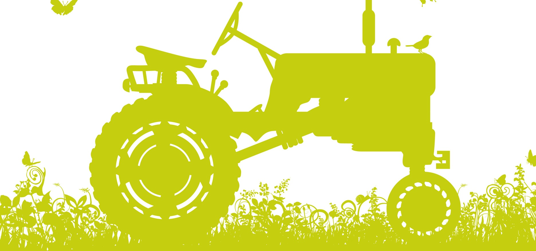 Precision agriculture: added value of geoinformation and LBS