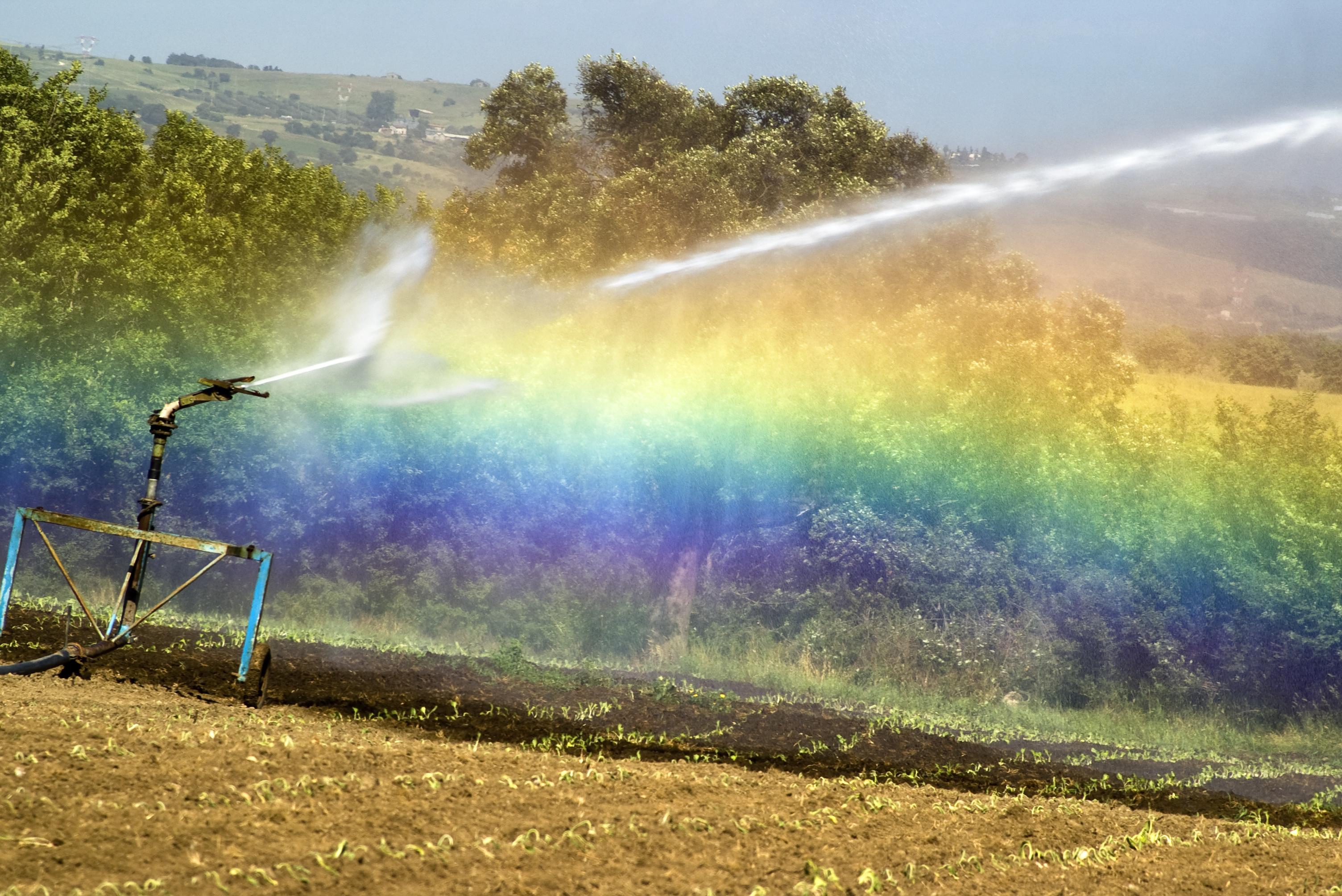 ARPA Emilia-Romagna: Satellite images to forecast irrigation