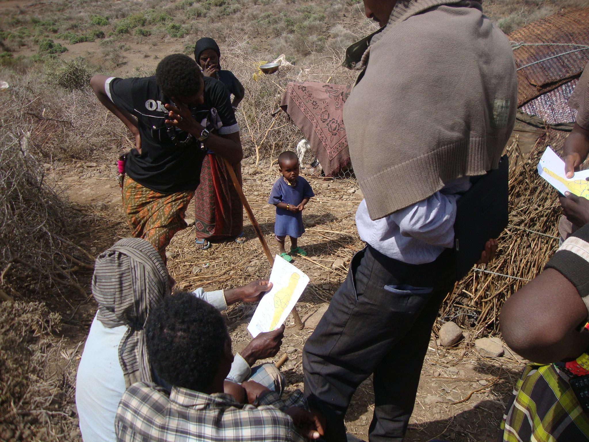 SAPARM: finding green pastures thanks to satellite data